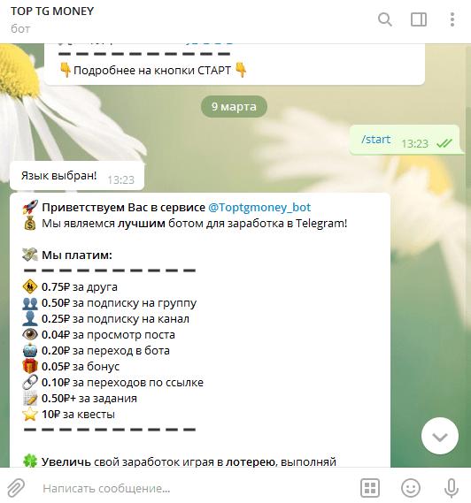 Как зарабатывать на боте в Телеграмм
